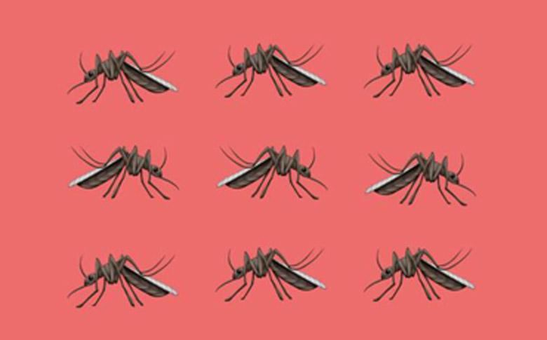 Por que há um mosquito na lista de emojis de 2018
